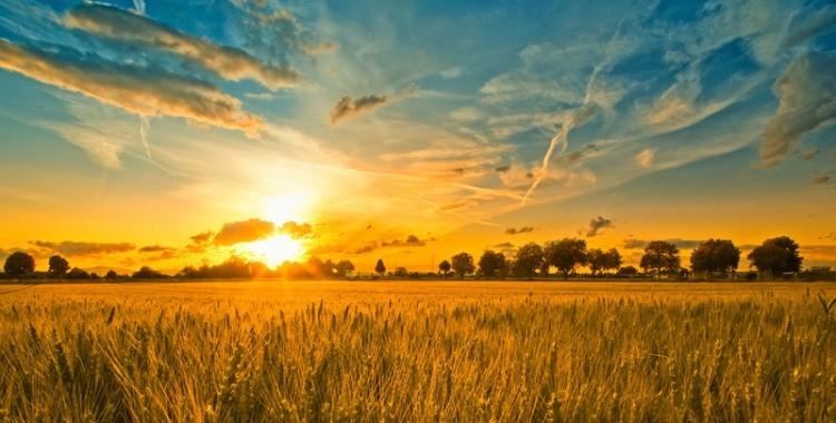 The Kingdom Parables - Part 2